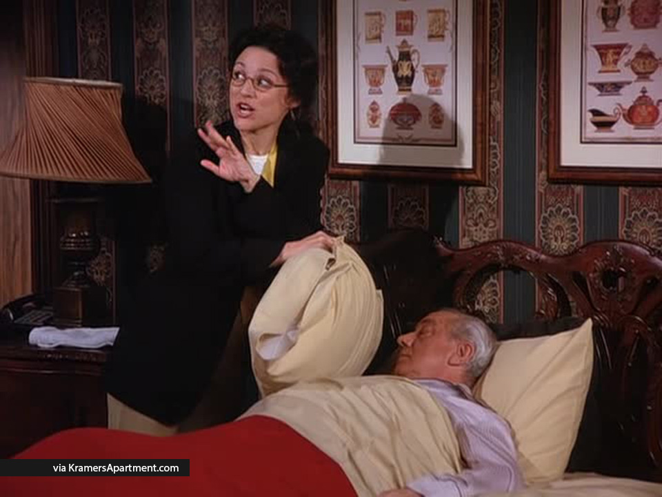 mr-pitt-the-diplomats-club-seinfeld-elaine-pillow